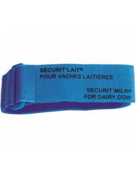 BRACELET SECURIT'LAIT BLEU x 6